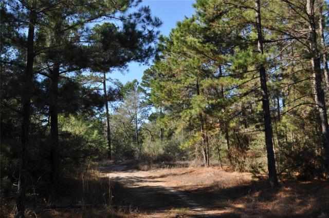 00 Hopewell Road Road, Huntsville, TX 77320 (MLS #8913202) :: Mari Realty