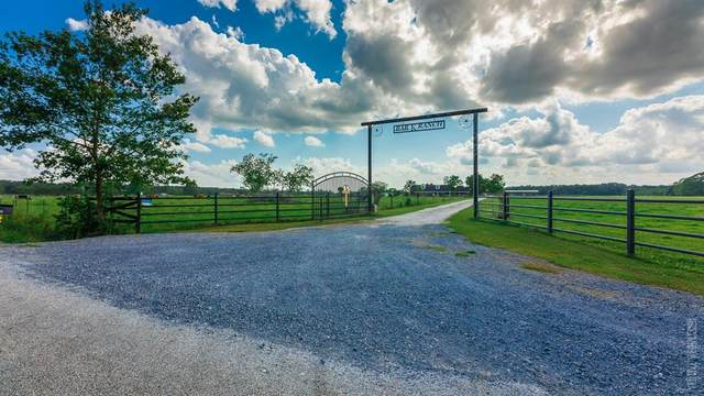 2778 County Road 701, Kirbyville, TX 75956 (MLS #89191627) :: The Bly Team