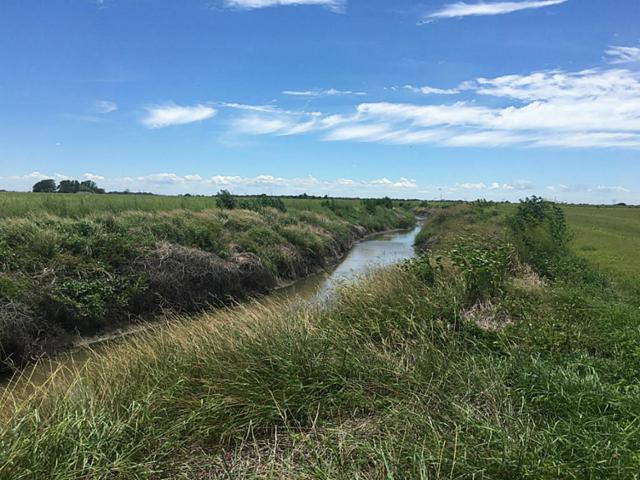 TR 6 County Road 328, Louise, TX 77455 (MLS #89197714) :: Christy Buck Team