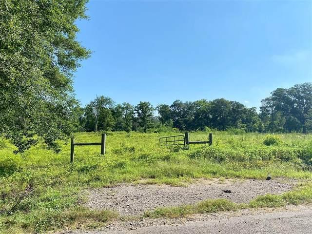 401 Oak Forest Drive, Angleton, TX 77515 (MLS #89221344) :: Michele Harmon Team