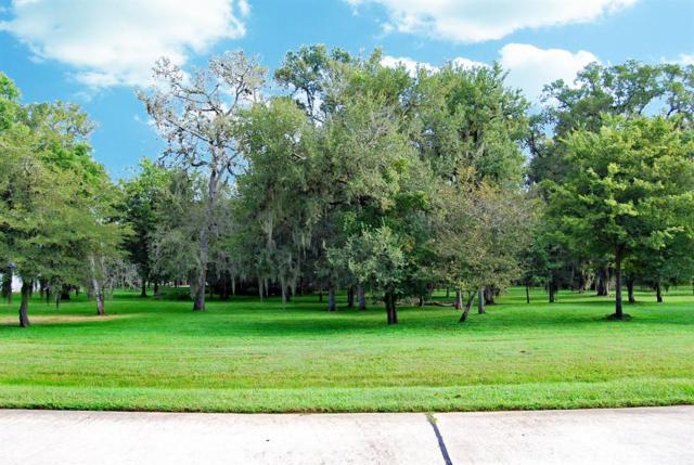 0 Wellspring Lake Drive, Fulshear, TX 77441 (MLS #8928056) :: See Tim Sell