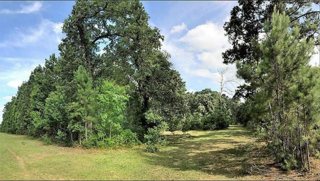 30525 Old Joseph Road, Hockley, TX 77447 (MLS #89307656) :: The Home Branch
