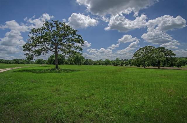 - Dixie Road, Brenham, TX 77833 (MLS #89308480) :: The Sansone Group