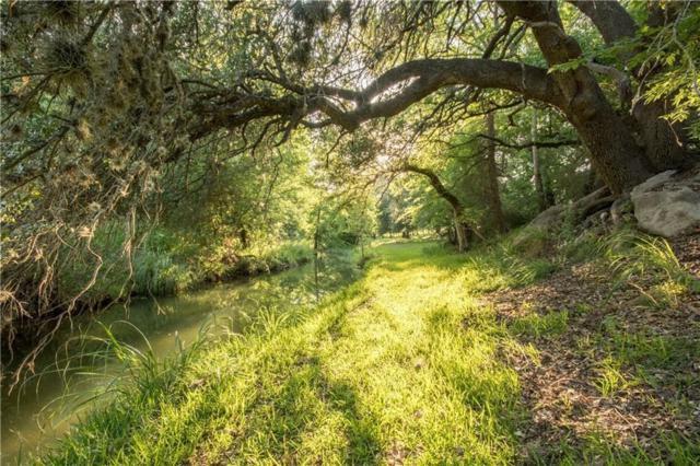 109 Bob Moritz Drive, Fredericksburg, TX 78624 (MLS #89330331) :: Texas Home Shop Realty