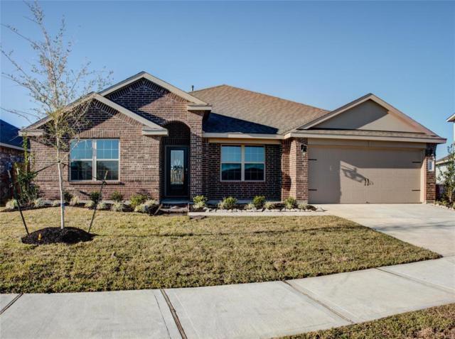 4215 Blossom Bend Lane, Missouri City, TX 77459 (MLS #89353596) :: Texas Home Shop Realty