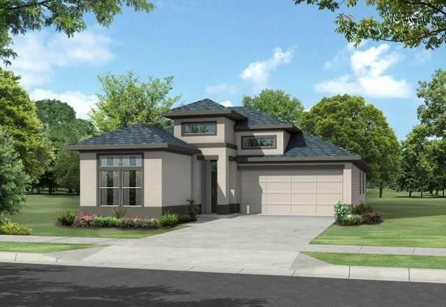 8715 Timber Knoll Drive, Missouri City, TX 77459 (MLS #89448915) :: The Property Guys
