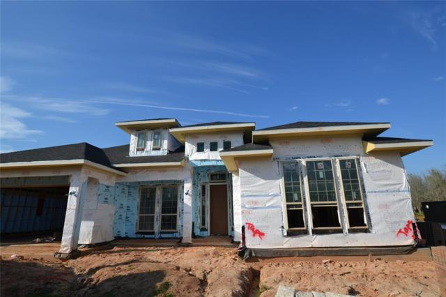 32806 Wall Flower Drive, Fulshear, TX 77441 (MLS #89541123) :: Krueger Real Estate