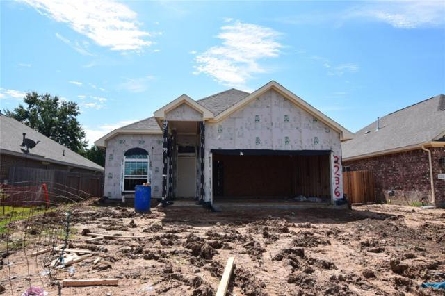 2236 Ivy Wall Drive, Conroe, TX 77301 (MLS #89543078) :: The SOLD by George Team