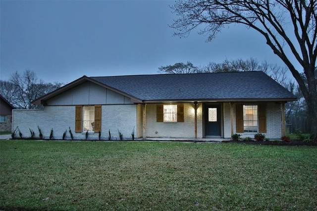 18411 Anne Drive, Webster, TX 77058 (MLS #89550139) :: Christy Buck Team