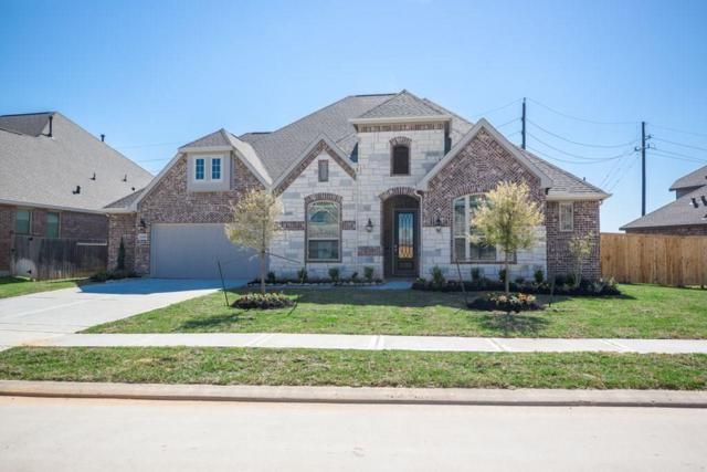 20218 Rosegold Way, Spring, TX 77379 (MLS #89594353) :: The Home Branch