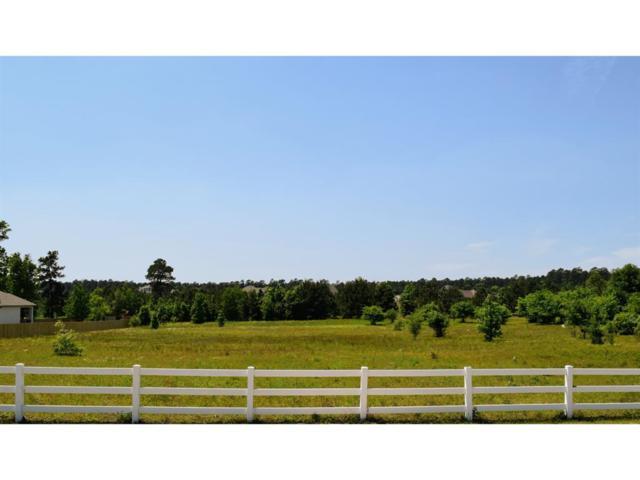 8830 Grand Lake Estates Drive, Montgomery, TX 77316 (MLS #89608064) :: Team Parodi at Realty Associates