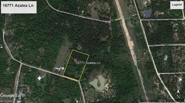 16771 Azalea Lane, Plantersville, TX 77363 (MLS #89660770) :: The SOLD by George Team