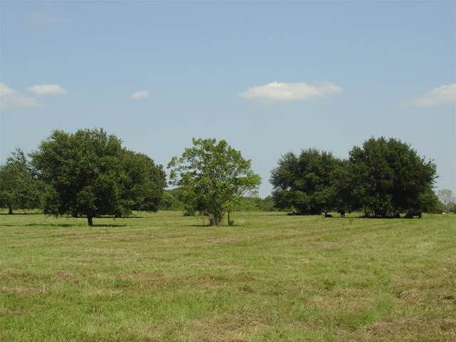 14350 Cochran Road, Waller, TX 77484 (MLS #89695334) :: Bray Real Estate Group