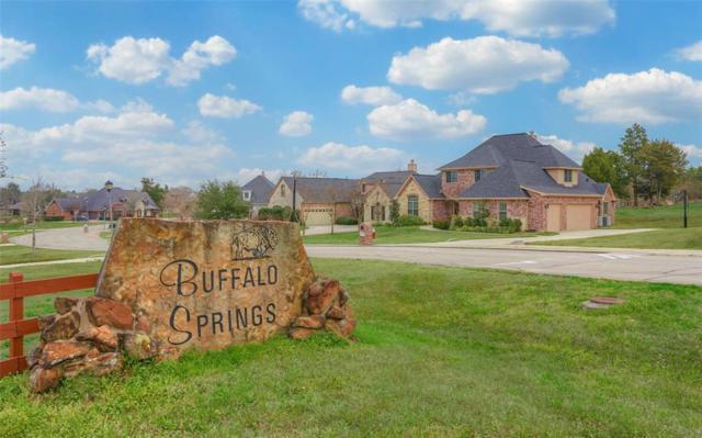 395 Berkley Drive, Montgomery, TX 77356 (MLS #897217) :: Texas Home Shop Realty