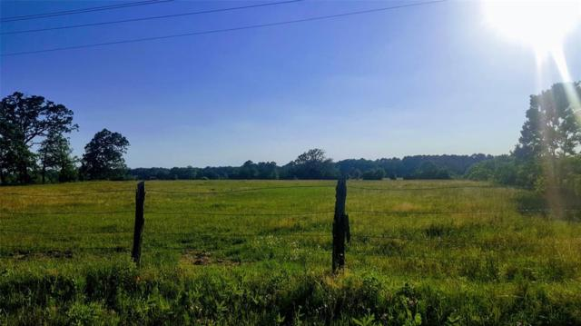 13 Ac County Road 1805, Latexo, TX 75849 (MLS #89751347) :: Texas Home Shop Realty