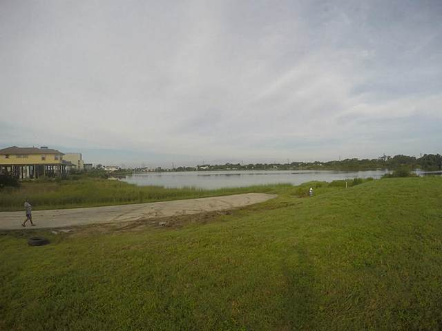 1701 Todville Road, Seabrook, TX 77586 (#89756725) :: ORO Realty