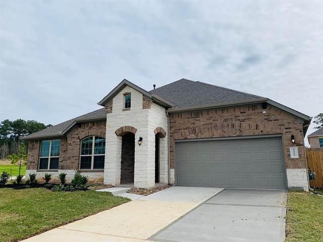6222 Blue Coast, Conroe, TX 77304 (MLS #89825129) :: Giorgi Real Estate Group