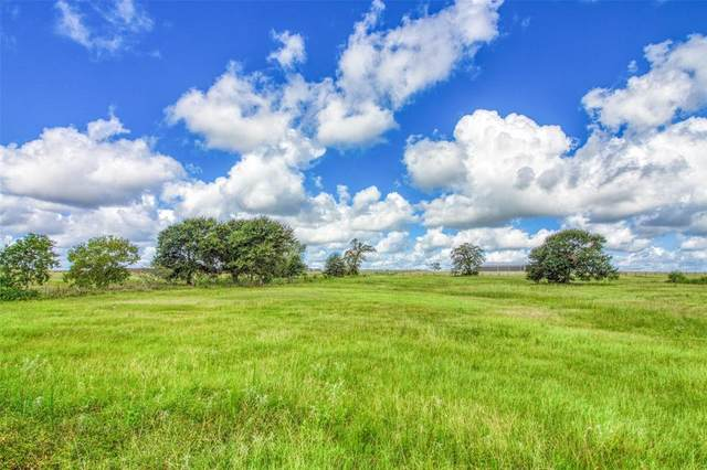 32228 Stagecoach Road, Hempstead, TX 77445 (MLS #8989329) :: The Bly Team