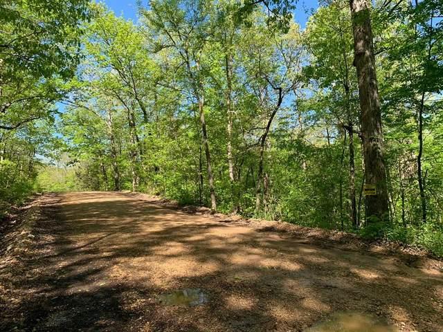 0 Wagon Trail, Other, AR 72482 (MLS #89909823) :: Michele Harmon Team