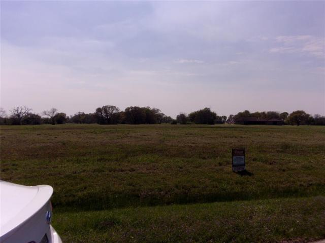 726 Lily Lane, Rosharon, TX 77583 (MLS #89931515) :: The SOLD by George Team