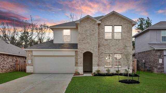 20826 Olive Leaf Street, New Caney, TX 77357 (MLS #90058554) :: The Bly Team