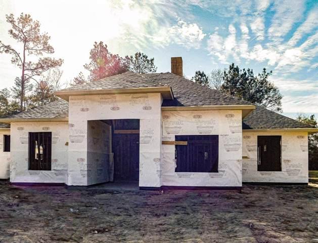 19502 Nasas Drive, Porter, TX 77365 (MLS #90062050) :: Texas Home Shop Realty