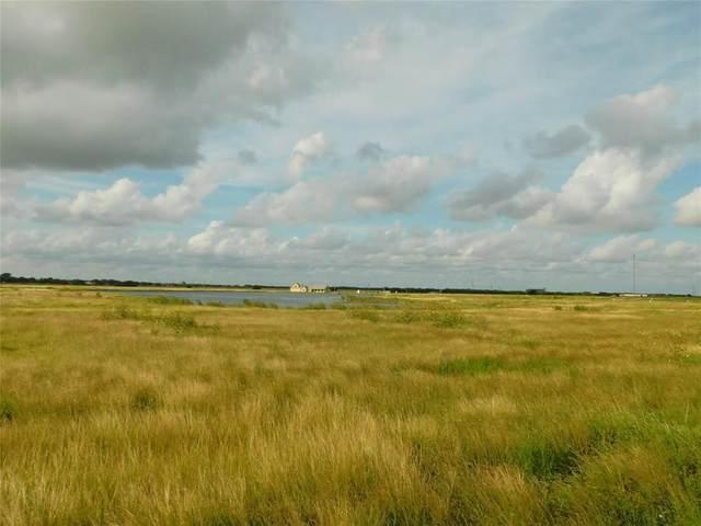 Lot 86 Wind Swept Point, Port Lavaca, TX 77979 (MLS #90066909) :: Michele Harmon Team