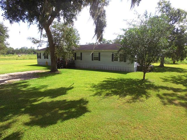 3991 County Road 348, Brazoria, TX 77422 (MLS #90098163) :: Giorgi Real Estate Group