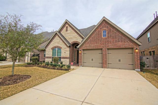 3703 Brampton Island Drive, Katy, TX 77494 (MLS #90099103) :: King Realty