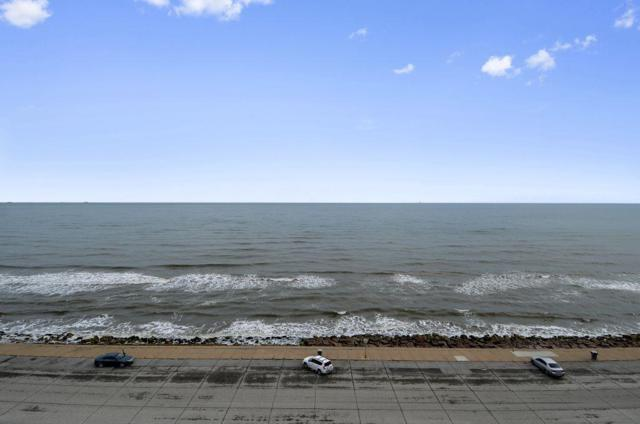 10327 Termini San Luis Pass Road #216, Galveston, TX 77554 (MLS #90162373) :: The SOLD by George Team