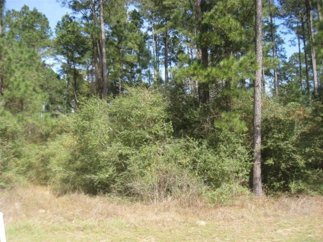 26072 Crown Ranch Blvd, Montgomery, TX 77316 (MLS #90181578) :: Fairwater Westmont Real Estate