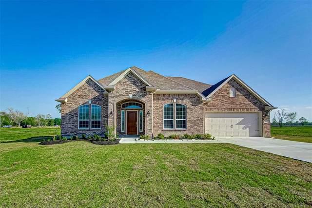 15202 Icet Creek Avenue, Mont Belvieu, TX 77523 (MLS #90204272) :: Connect Realty