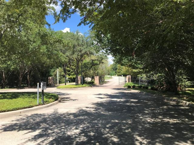 12 Kings River Court, Houston, TX 77346 (MLS #90219775) :: The SOLD by George Team
