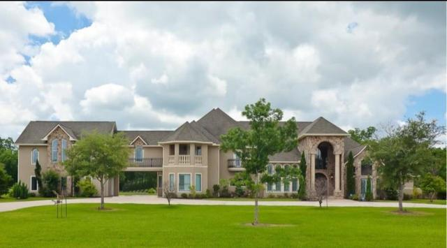 9005 Thompson Lake Drive, Missouri City, TX 77459 (MLS #90222293) :: The SOLD by George Team