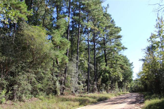 827 County Road 4494, Hillister, TX 77624 (MLS #90246031) :: Texas Home Shop Realty