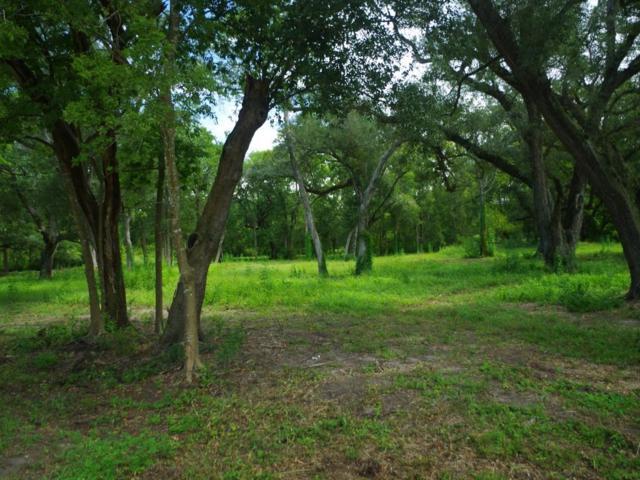 0 Debi, Boling, TX 77420 (MLS #90316364) :: Caskey Realty