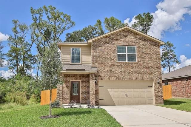22602 Steel Blue Jaybird Drive, Hockley, TX 77447 (MLS #90389923) :: The Sansone Group
