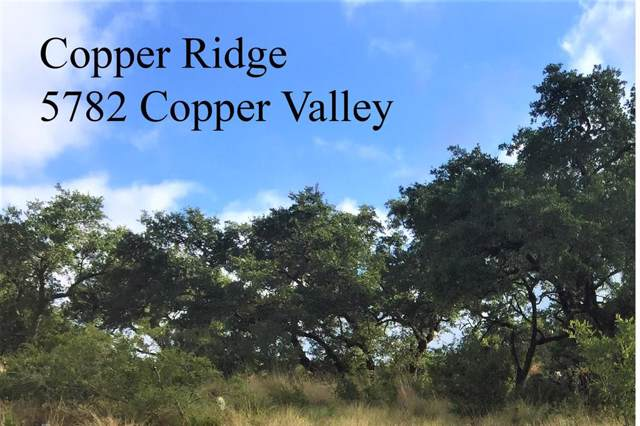5782 Copper Valley, New Braunfels, TX 78132 (MLS #90575233) :: The Heyl Group at Keller Williams
