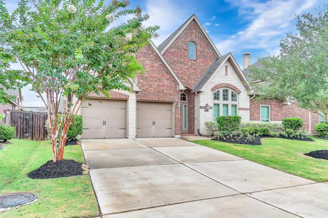 10215 Pilibos Park Court, Katy, TX 77494 (MLS #90597901) :: Team Sansone