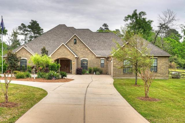 33114 Colette Street, Magnolia, TX 77355 (MLS #90616292) :: Fine Living Group