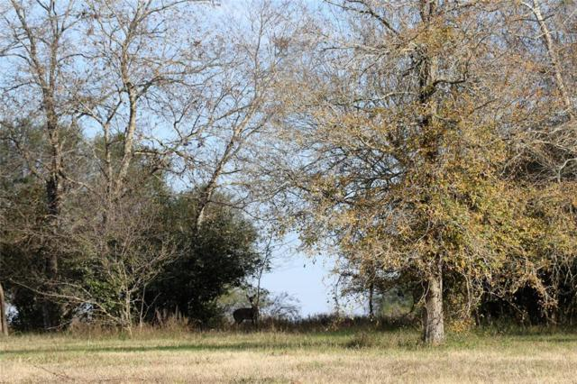 10954 Stefka Road, Hempstead, TX 77445 (MLS #90622286) :: Texas Home Shop Realty