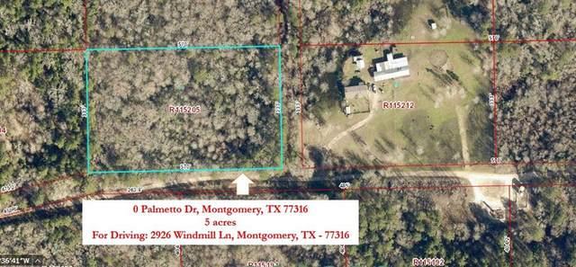 0 Palmetto Dr, Montgomery, TX 77316 (MLS #90692656) :: Christy Buck Team