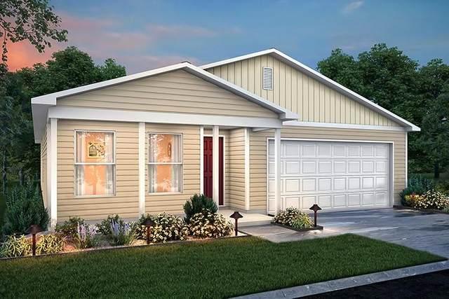 164 Golden Rod, Livingston, TX 77351 (MLS #90729806) :: Connect Realty