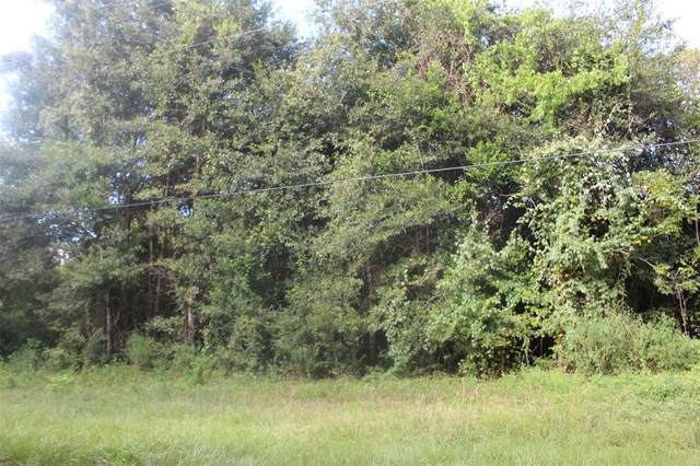 TBD Churchhill Downs, Montgomery, TX 77316 (MLS #90919011) :: Caskey Realty