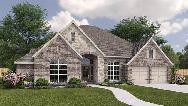 29003 Ally Lynn Way, Katy, TX 77494 (MLS #9092646) :: The Property Guys