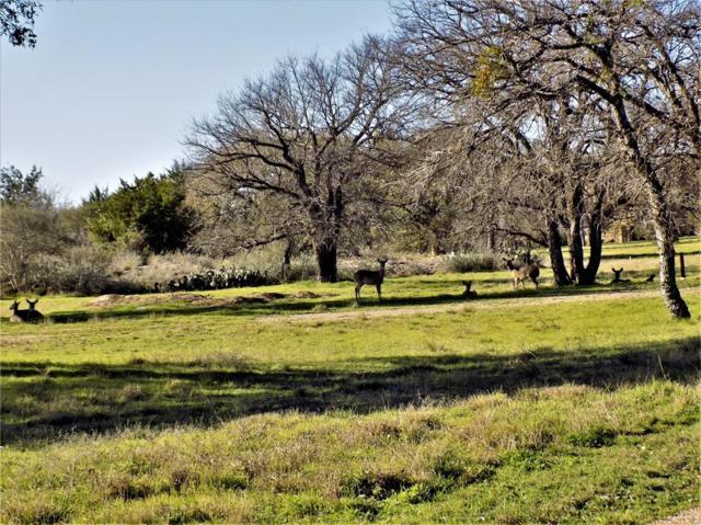 7 La Serena Loop, Horseshoe Bay, TX 78657 (MLS #90951833) :: Fairwater Westmont Real Estate