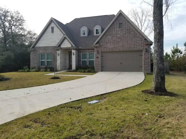 113 Golden Eye Court, Montgomery, TX 77316 (MLS #90979160) :: Krueger Real Estate