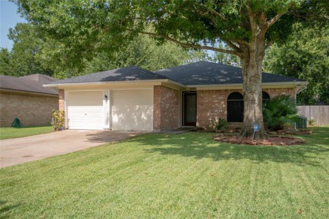 15907 Marsh Hawk Street, Humble, TX 77396 (MLS #91034455) :: The Parodi Team at Realty Associates