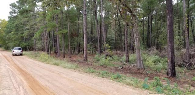 14488 Rolling Hills Road, Navasota, TX 77868 (MLS #91043992) :: The SOLD by George Team