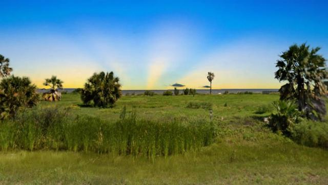 1534 Hwy 87, Gilchrist, TX 77617 (MLS #9114734) :: Giorgi Real Estate Group